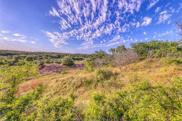 TBD-10 Spring Ranch Drive, Weatherford, TX 76088 (MLS #14399869) :: The Heyl Group at Keller Williams