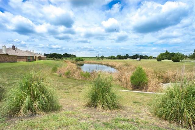 916 Salem Court, Royse City, TX 75189 (MLS #14400073) :: The Rhodes Team