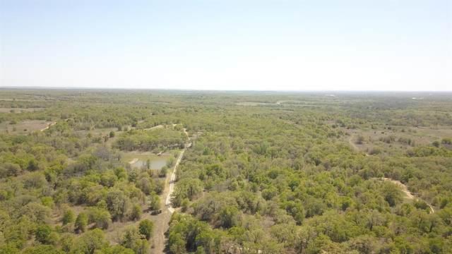 000 Jordan Road, Poolville, TX 76487 (MLS #14400483) :: The Hornburg Real Estate Group