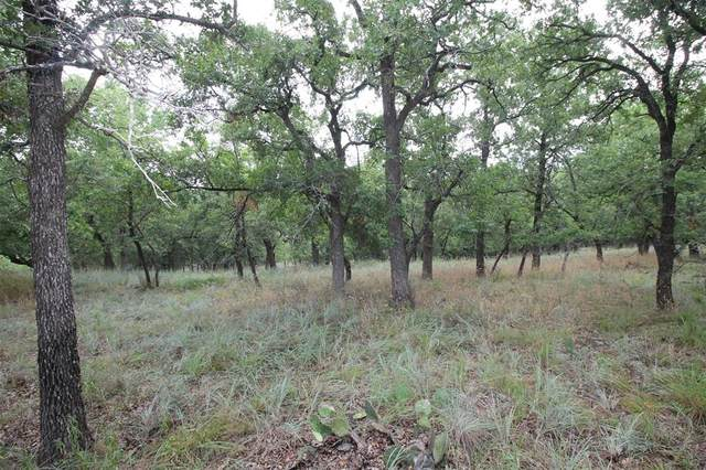 2 Lots Ridgeline Drive, Chico, TX 76431 (MLS #14400754) :: The Chad Smith Team