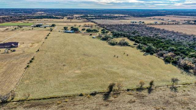 TBD Grimes Road, Mineral Wells, TX 76067 (MLS #14400923) :: The Heyl Group at Keller Williams