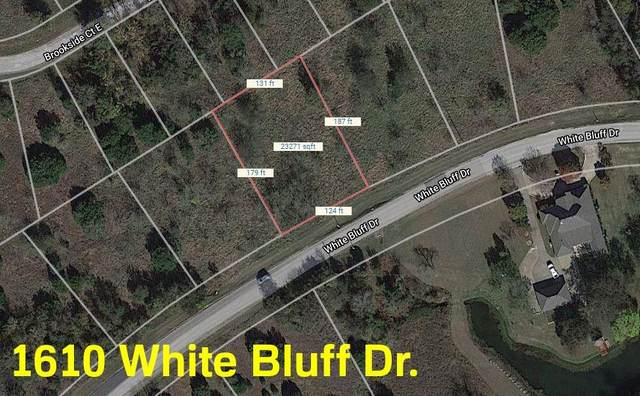 1610 White Bluff Drive, Whitney, TX 76692 (MLS #14401918) :: Real Estate By Design