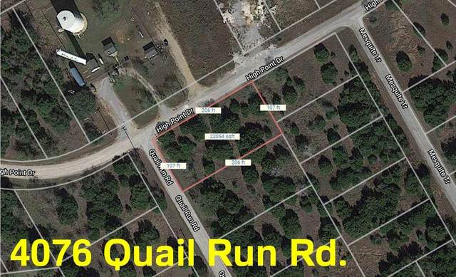 4076 Quail Run Road, Whitney, TX 76692 (MLS #14401921) :: The Heyl Group at Keller Williams