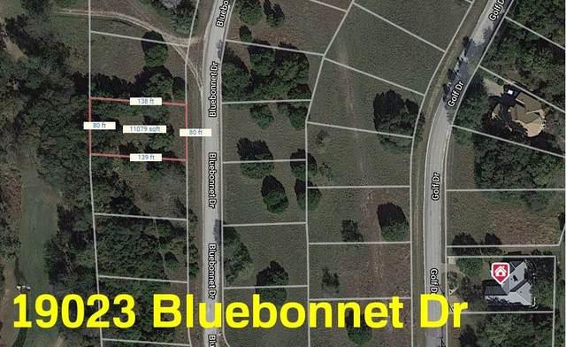 19023 Bluebonnet Drive, Whitney, TX 76692 (MLS #14401923) :: The Heyl Group at Keller Williams