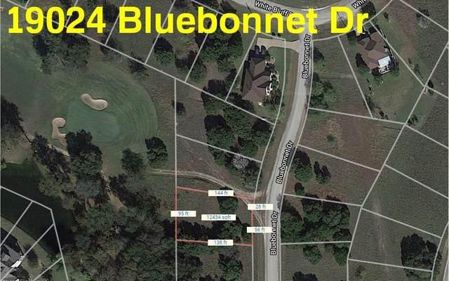 19024 Bluebonnet Drive, Whitney, TX 76692 (MLS #14401924) :: The Heyl Group at Keller Williams