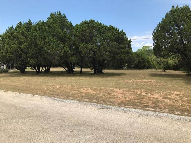 TBa Big Bend Drive, Whitney, TX 76692 (MLS #14402128) :: The Heyl Group at Keller Williams