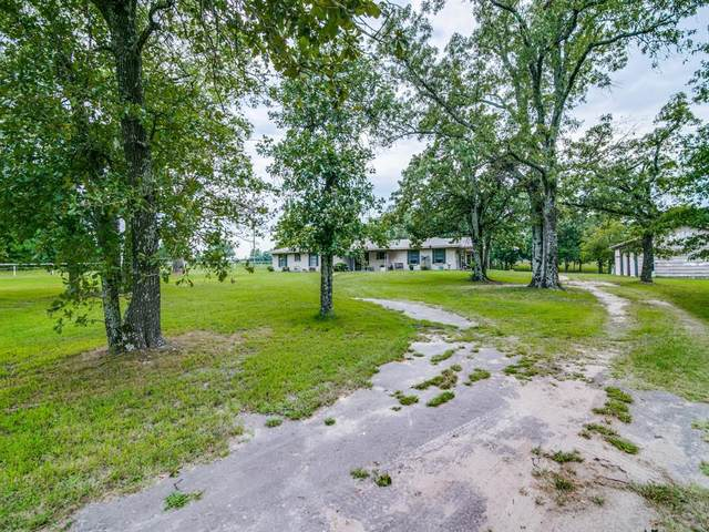 511 Pvt Road 7104, Edgewood, TX 75117 (MLS #14402683) :: The Kimberly Davis Group