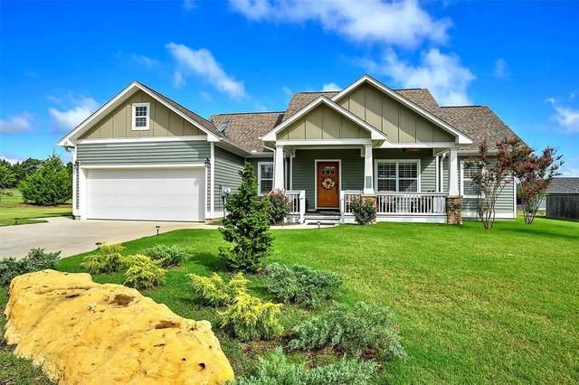 161 Whispering Meadow Boulevard, Pottsboro, TX 75076 (MLS #14403285) :: The Chad Smith Team