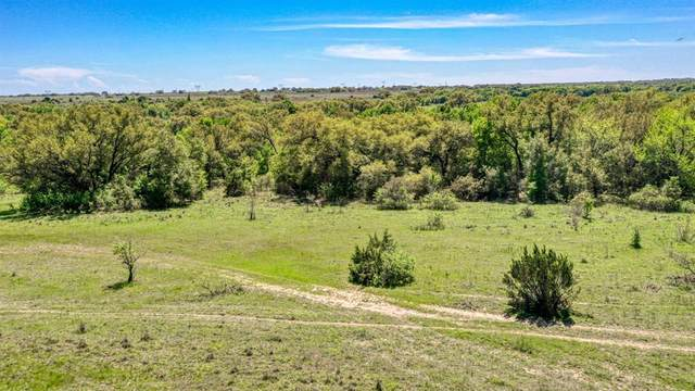 0 E State Hwy 6, Dublin, TX 76446 (MLS #14403916) :: North Texas Team | RE/MAX Lifestyle Property