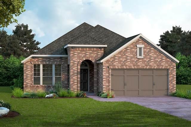 325 Foxthorne Way, Little Elm, TX 75068 (MLS #14404552) :: The Heyl Group at Keller Williams