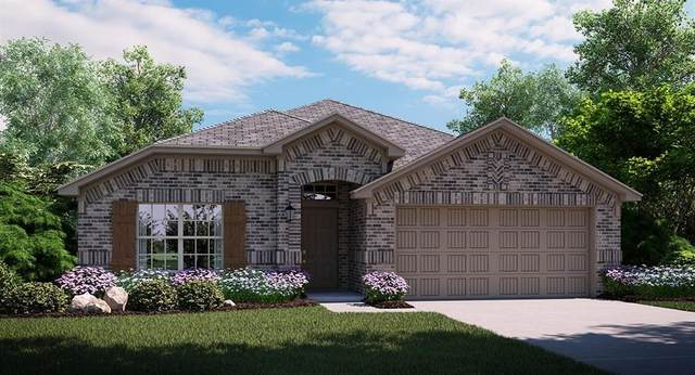 2321 Rosaline Drive, Little Elm, TX 76068 (MLS #14404883) :: Real Estate By Design