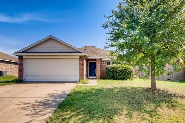 509 Harvard Drive, Princeton, TX 75407 (MLS #14404916) :: The Heyl Group at Keller Williams