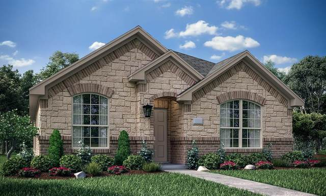 2304 Evening Stone Drive, Little Elm, TX 75068 (MLS #14404935) :: The Heyl Group at Keller Williams