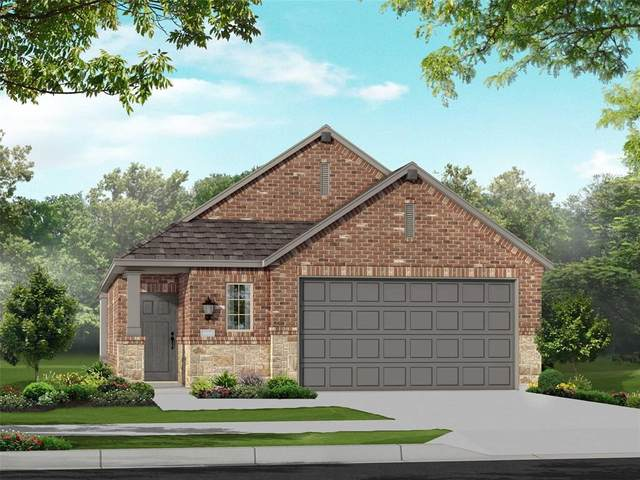 3907 Spencer Lane, Heartland, TX 75126 (MLS #14405286) :: The Heyl Group at Keller Williams