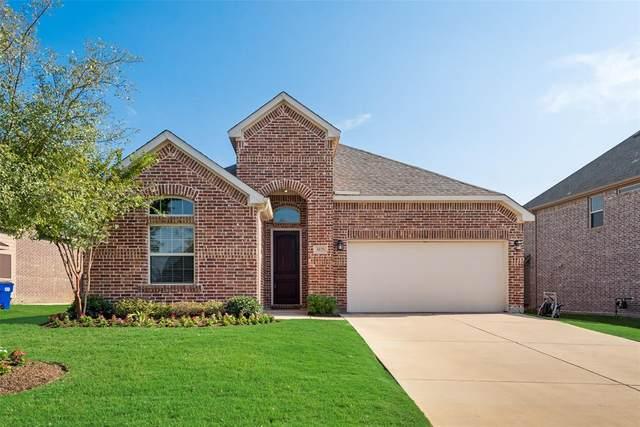 3028 Lakefield Drive, Little Elm, TX 75068 (MLS #14406553) :: Team Tiller