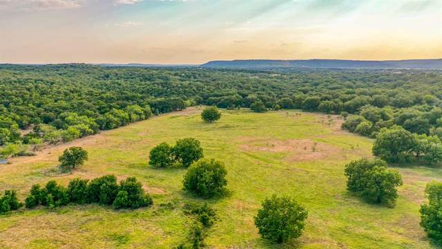 896A Fm Road 2201, Santo, TX 76472 (MLS #14407071) :: The Kimberly Davis Group