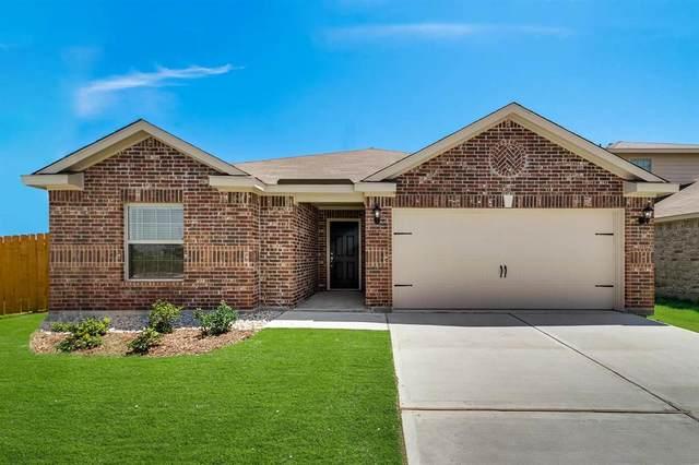 3109 Zapta Road, Forney, TX 75126 (MLS #14408228) :: The Heyl Group at Keller Williams