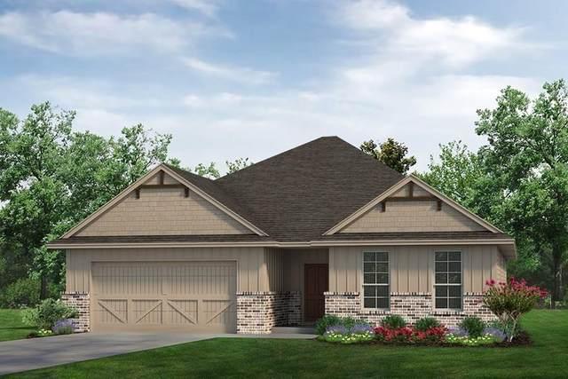 920 Blackbird Drive, Sherman, TX 75092 (MLS #14408281) :: The Heyl Group at Keller Williams