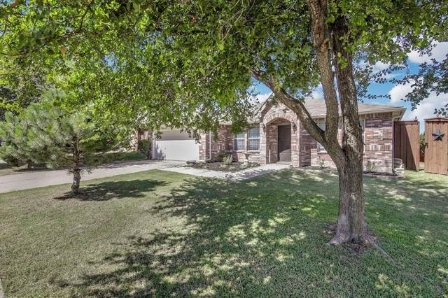 113 Sierra Trail, Justin, TX 76247 (MLS #14408504) :: The Heyl Group at Keller Williams