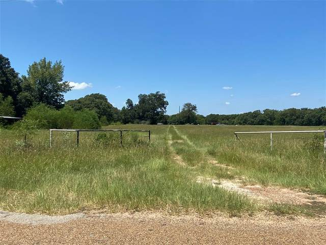 7990 County Road 41511, Athens, TX 75751 (MLS #14408915) :: The Heyl Group at Keller Williams