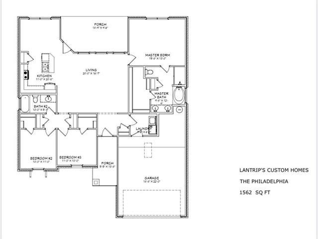 313 Sophia Lane, Abilene, TX 79602 (MLS #14409007) :: North Texas Team | RE/MAX Lifestyle Property