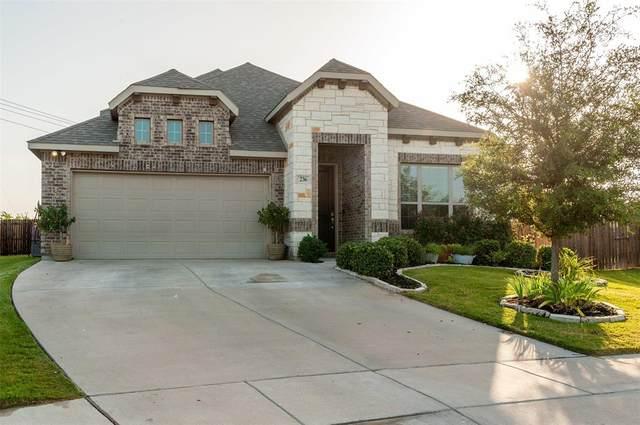 236 Carson Drive, Waxahachie, TX 75167 (MLS #14409249) :: The Sarah Padgett Team