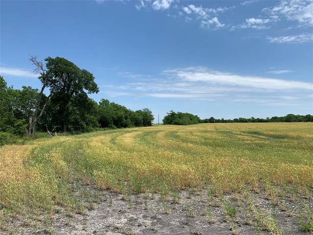 Tract 2 County Rd 2730, Farmersville, TX 75442 (MLS #14409333) :: The Hornburg Real Estate Group