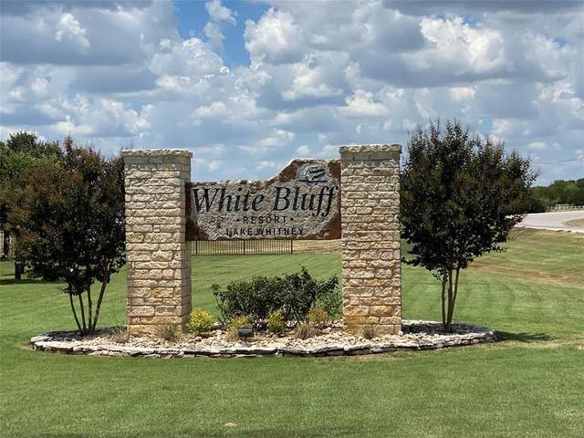 33022 Woodcrest Drive, Whitney, TX 76692 (MLS #14409673) :: The Chad Smith Team