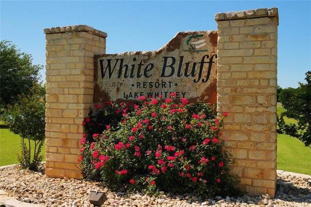 38077 Brookside Drive, Whitney, TX 76692 (MLS #14410019) :: All Cities USA Realty