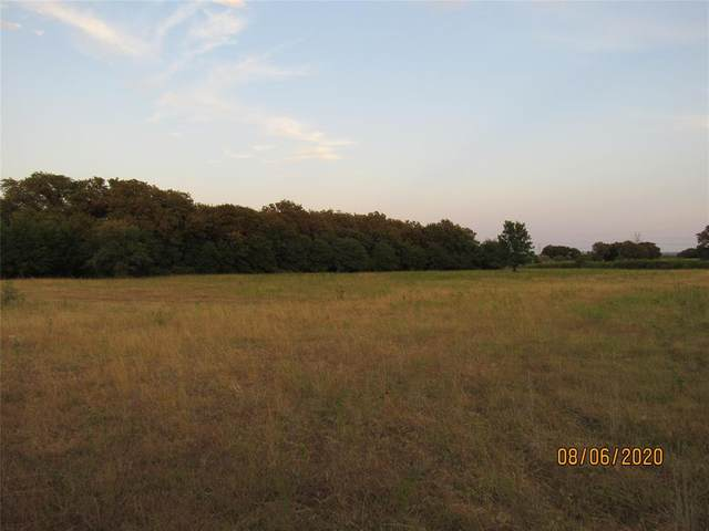 8780 Us Hwy 281 Road S, Perrin, TX 76486 (MLS #14410239) :: The Hornburg Real Estate Group