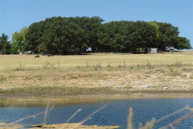 581 183 Highway, Goldthwaite, TX 76844 (MLS #14410256) :: The Hornburg Real Estate Group