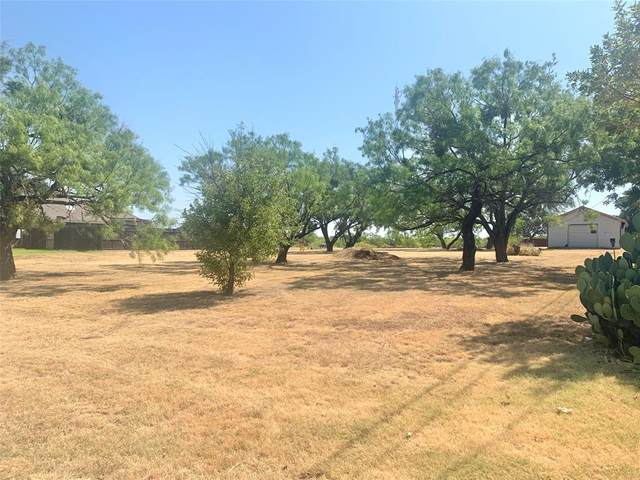 TBD Sha Lane, Breckenridge, TX 76424 (MLS #14412025) :: The Hornburg Real Estate Group