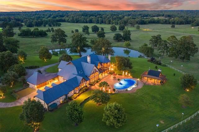 40 SE Cr 4210, Mount Vernon, TX 75457 (MLS #14412102) :: Real Estate By Design