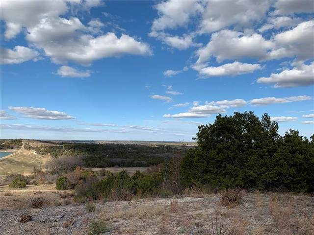 1495 Anchors Way, Bluff Dale, TX 76433 (MLS #14412275) :: Real Estate By Design