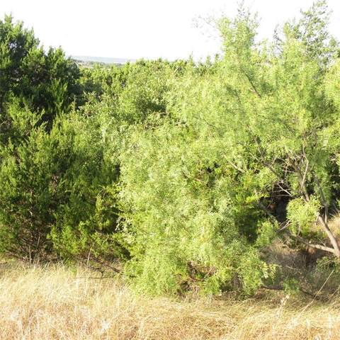 Lot 222 Cliffs Drive, Graford, TX 76449 (MLS #14413592) :: The Chad Smith Team