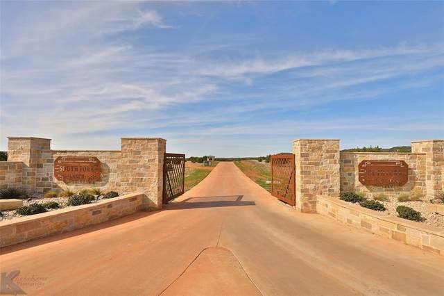 173 Western Trail, Buffalo Gap, TX 79508 (MLS #14413700) :: The Juli Black Team