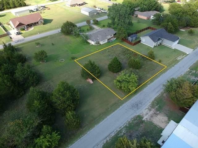 385 Parker Drive, Pottsboro, TX 75076 (MLS #14413912) :: The Tierny Jordan Network