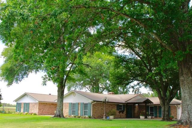 1481 Vz County Road 1507, Van, TX 75790 (MLS #14414191) :: The Kimberly Davis Group