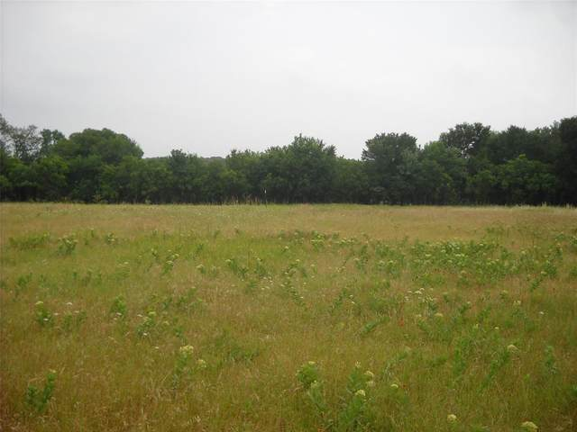 000 Hwy 377, Argyle, TX 76226 (MLS #14415165) :: All Cities USA Realty