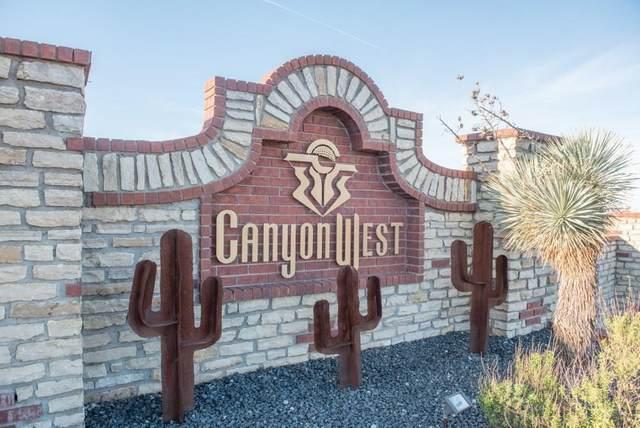 106 Club House Drive, Weatherford, TX 76087 (MLS #14416260) :: The Daniel Team