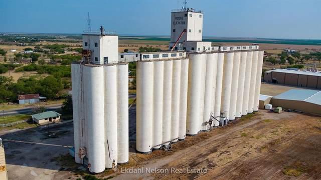 423 E Lake Drive, Hamlin, TX 79520 (MLS #14416918) :: Real Estate By Design