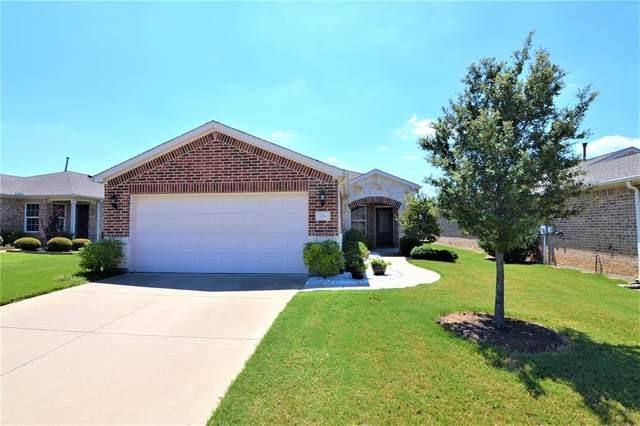 211 Montague Lane, Frisco, TX 75036 (MLS #14417118) :: The Mitchell Group