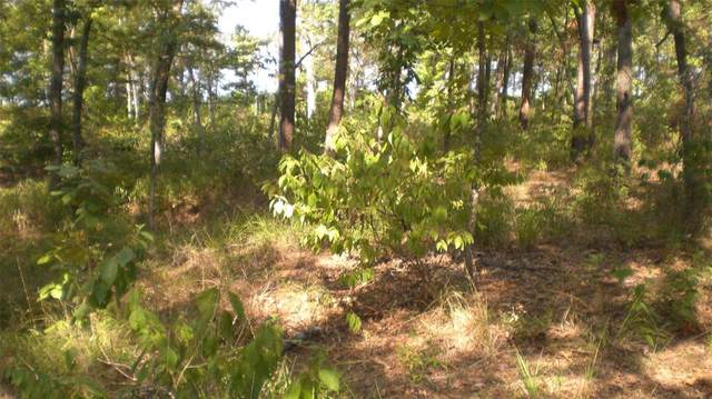 Lot 7 Pr 52444, Leesburg, TX 75451 (MLS #14417682) :: All Cities USA Realty