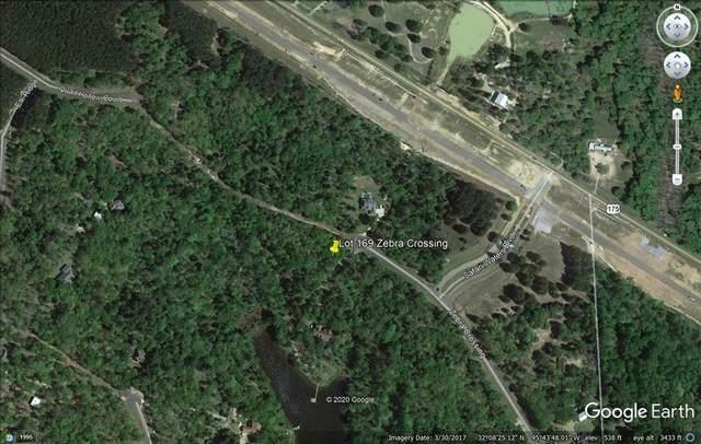 LT 169 Zebra Crossing, Larue, TX 75770 (MLS #14420382) :: Team Hodnett