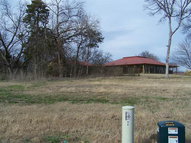 58 Lone Oak Boulevard, Pottsboro, TX 75076 (MLS #14423428) :: Feller Realty