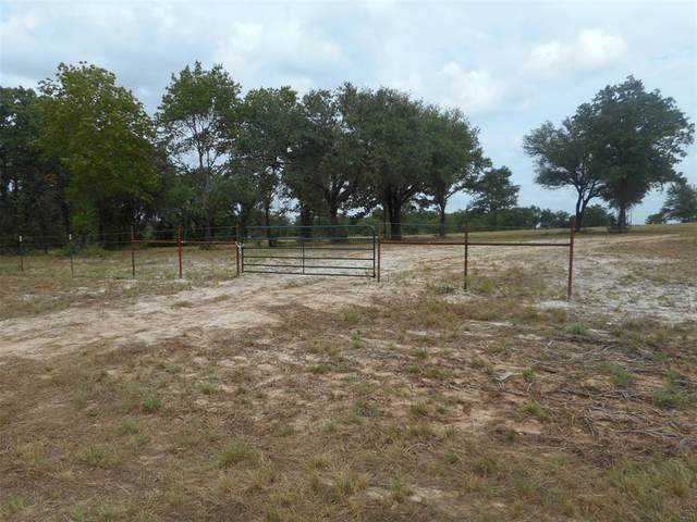 8605 Star Hollow Road, Lipan, TX 76462 (MLS #14424352) :: The Kimberly Davis Group