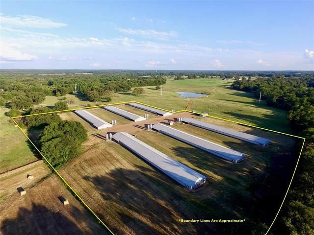 TBD County Road 3340, Omaha, TX 75571 (MLS #14424398) :: The Chad Smith Team