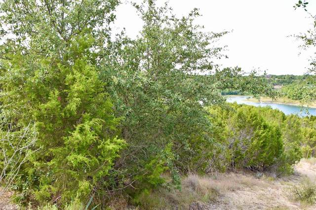 1800 Lakeside Drive, Bluff Dale, TX 76433 (MLS #14424604) :: Team Hodnett
