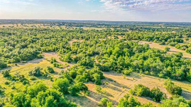 1000 Spring Ranch Drive, Weatherford, TX 76088 (MLS #14425312) :: EXIT Realty Elite