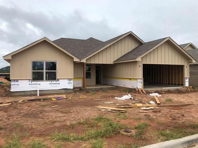 457 Big Sky Loop, Buffalo Gap, TX 79508 (MLS #14426100) :: Real Estate By Design